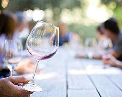 oenologie vin degustation seminaire